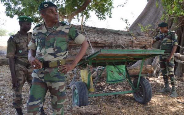 Trois officiers des Eaux et Forêts du Sénégal arrêtés par la police Gambienne