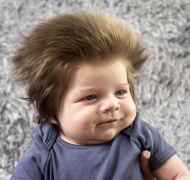 Agé de neuf semaines seulement, ce bébé est le plus cool du monde avec sa touffe de cheveux incroyable