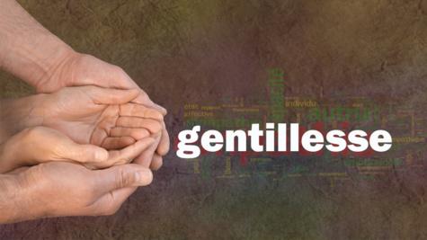 Aujourd'hui 3 novembre, Journée internationale de la gentillesse