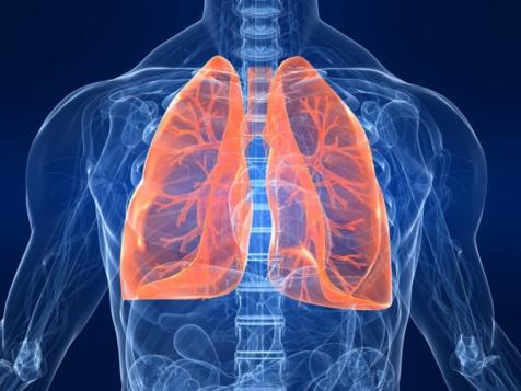 Ce jeudi 16 novembre- 2 journées mondiales:  la journée mondiale contre les Broncho-Pneumopathies Chroniques Obstructives et la Journée Internationale de la Tolérance