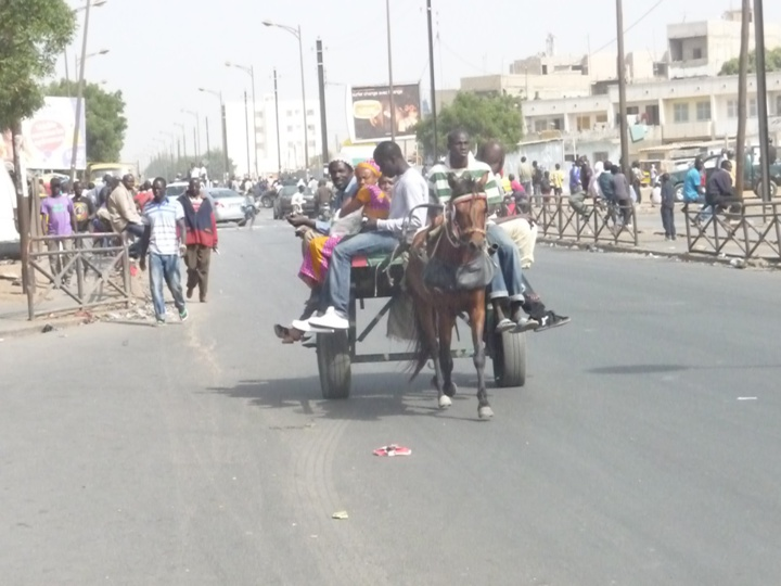 Madagascar : la mairie d'Antananarivo interdit les charrettes en ville