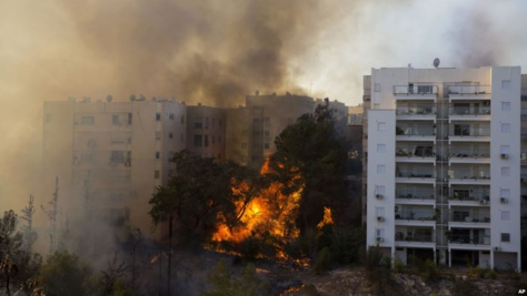 Les feux de végétation ravagent à Haïfa, Israël, 24 novembre 2016.
