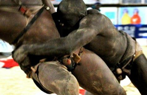 Affaire du meurtre de Ndiaga Diouf : Un ancien roi des arènes au banc des accusés