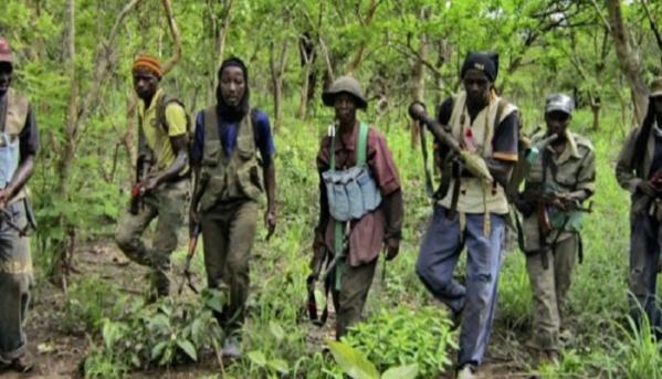 Les rebelles posent des conditions à l' Etat su Sénégal