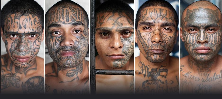 MS- 13, l'un des gangs les plus violents au Monde (Los Angeles, Californie).