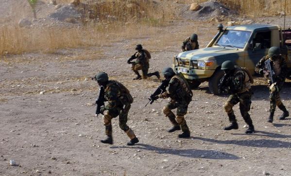 Gambie: début de l'intervention militaire