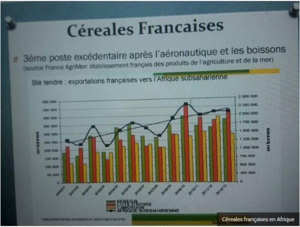 Le Front Anti CFA passe la seconde, boycott et alternatives aux produits français en Afrique