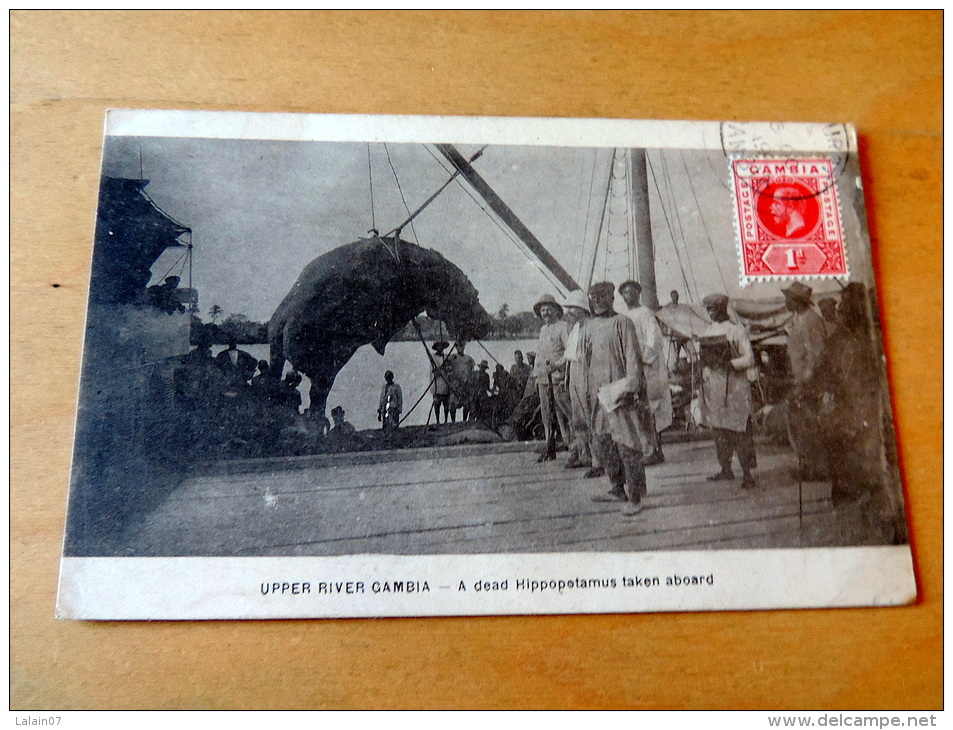Photos: Carte postale Ancienne : GAMBIE