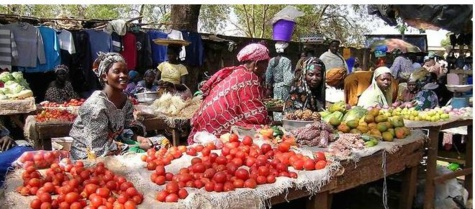 Agriculture : comment l'Afrique de l'Ouest s'y prend sur les marchés internationaux
