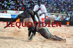 LUTTE - Vainqueur hier de Ness : Gambien confirme la bonne santé de Boul Faalé