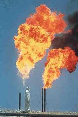 Les recettes pétrolières de l'Algérie vont diminuer de moitié