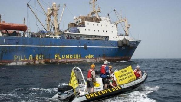 Pêche illicite en Afrique de l'Ouest : Greenpeace immobilise 11 bateaux
