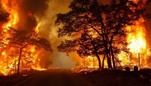Mbaye faye condamné à 5 ans de travaux forcés, après avoir brûlé les cases de ses voisins