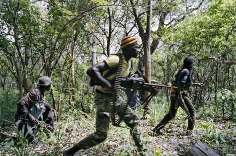 Paix en Casamance: Les rebelles vers l'unité