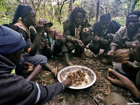La crise postélectorale gambienne a contribué à rapprocher les différents chefs rebelles,.