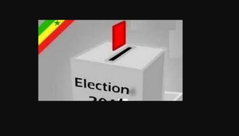Elections législatives 2017 : En France, Diaspora Plurielle se retire de la compétition