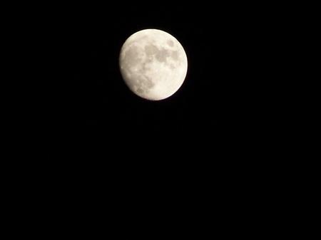 La lune scrutée à partir de vendredi, le jeûne démarre samedi ou dimanche