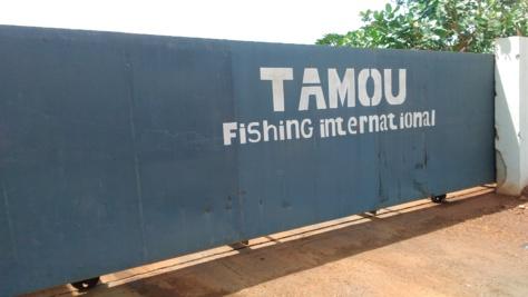 """Diamniadio : L'entreprise chinoise Tamou Fishing International critiquée pour ses """"méthodes esclavagistes"""""""