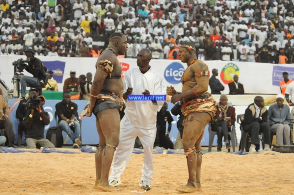 Combat Modou Lo-Lac 2, dimanche 16 juillet, à Demba Diop : Jour de vérité