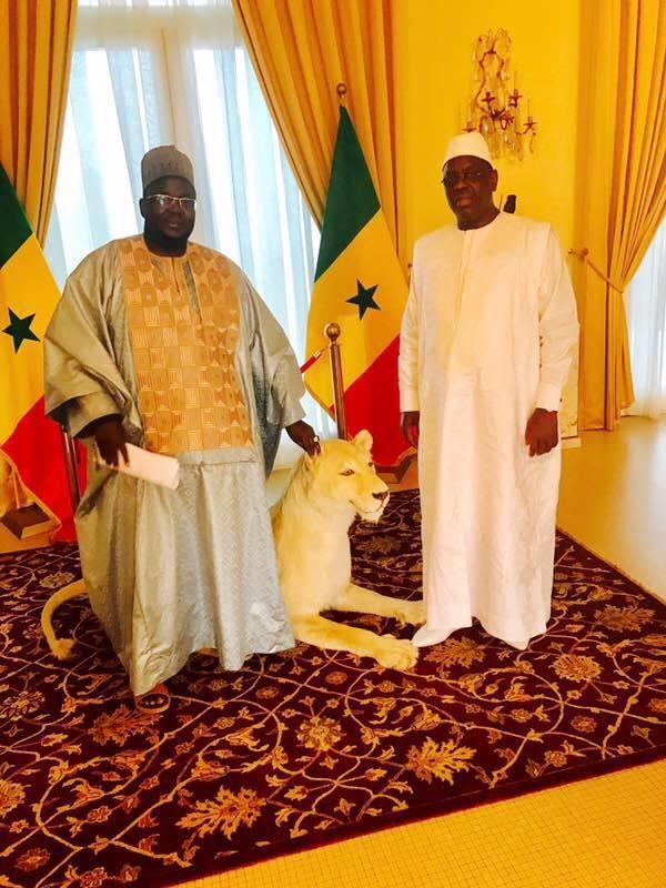 Médina Baye: Le RP de Cheikh Mansour Niass rafle la mise, confortant la victoire de Bby…