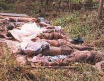 Déclaration du Secrétaire Général du MFDC :  Encore des morts de trop... hélas !