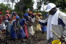 Des mourides au champ du président Jammeh