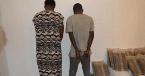 Tambacounda : Arrestation d'un baron de la drogue, à Gouloumbou