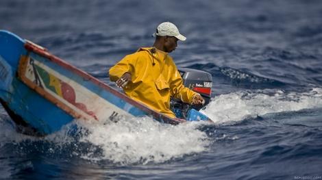 Au Sénégal, éleveurs et pêcheurs s'informent et échangent en temps réel