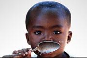 Ban réitère la détermination de l'ONU à garantir la sécurité alimentaire