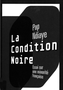 Pap Ndiaye, La Condition noire. Essai sur une minorité française