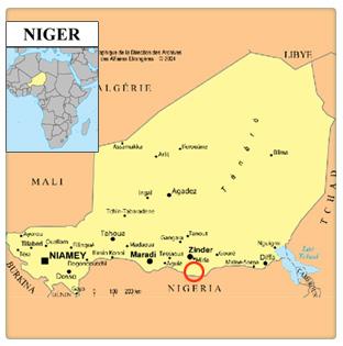 SITUATION POLITIQUE CONFUSE AU NIGER : L'AFRIQUE, l'ETERNELLE  RISEE  DU MONDE ?