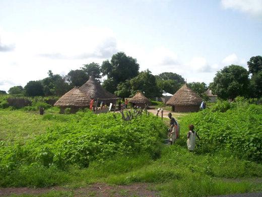 """Casamance : le gouvernement prêt à payer """"le prix qu'il faut"""" pour le retour de la paix (PM)"""