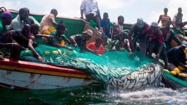 Pêche illégale en Afrique de l'Ouest: La Chine suspend les subventions et retire la licence à des compagnies impliquées