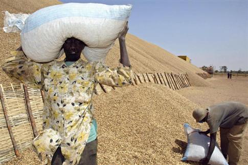 ME ABDOULAYE WADE REVELE DES DETOURNEMENTS DE FONDS ALLOUES AUX PAYSANS : «J'ai lancé une vaste enquête au ministère de l'Agriculture »