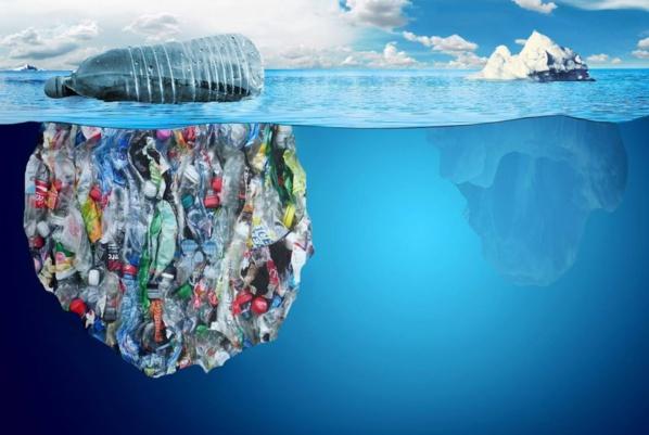 Journée mondiale de l'Environnement : « Combattons la pollution plastique ! »