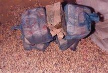 AFFAIRE DE SAISIE DE DROGUE AU MOLE 8 ; Le frère d'un colonel des Douanes éclaboussé, cinq Nigérians aux arrêts