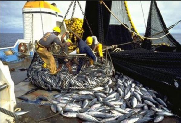Accords de pêche : le Sénégal et la Mauritanie se ...