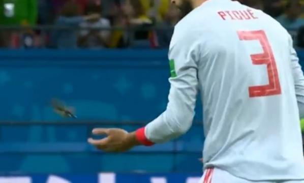 Isco et Piqué reçoivent un prix pour avoir sauvé un oiseau pendant un match