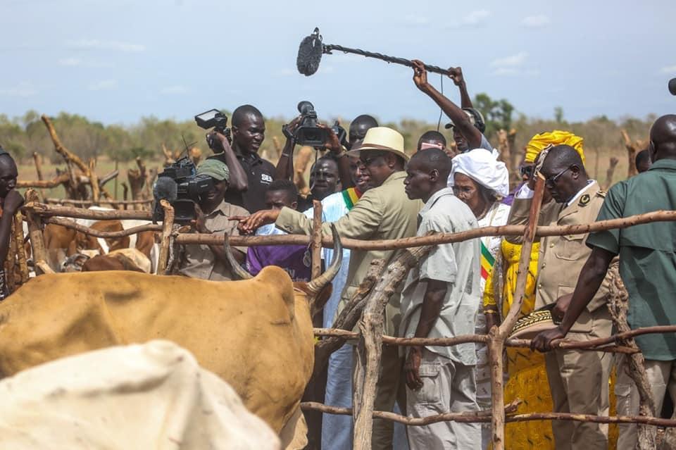 Les images de Macky Sall à Koungheul au chevet des éleveurs sinistrés avec une enveloppe d'un milliard Franc CFA