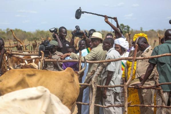 Macky Sall fait le bilan des intempéries: 22 992 moutons, 23 300 caprins et 521 bovins perdus