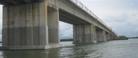 «Dans 5 mois, vous pourrez emprunter le pont sur le fleuve Gambie…» (Macky Sall)