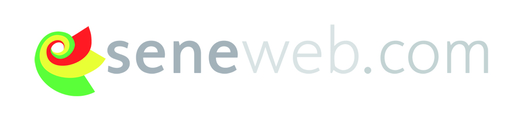 Malgré tout, Seneweb.com reste la référence