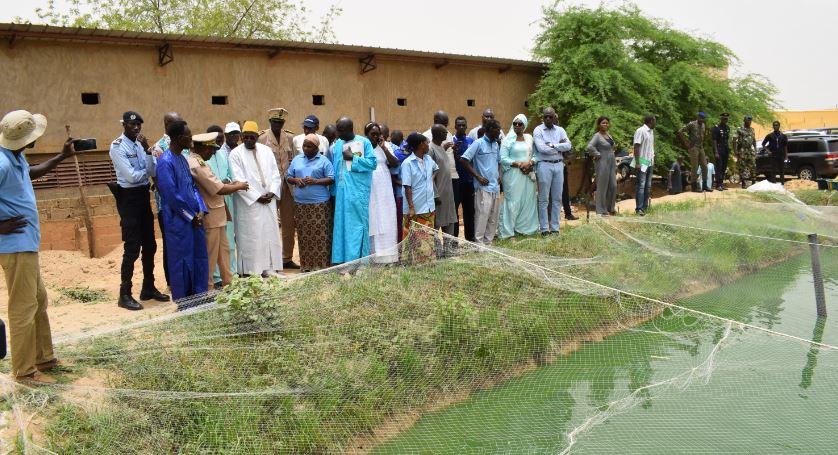 Gaya, Richard-Toll, Podor : L'aquaculture à l'honneur, le Ministre Oumar Guèye traduit la vision du Président en actes