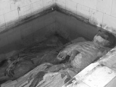 A Thiès, les coupures intempestives de l'électricité humilient les morts