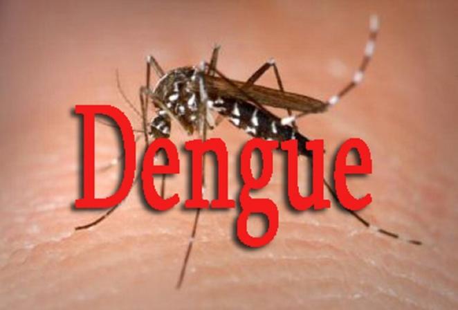 Dengue à Fatick : 3 nouveaux cas découverts