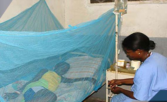 Dengue: l'épidémie se propage dans le nord du Sénégal