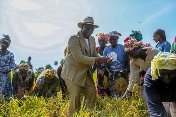 Fatick : la Convergence des Cadres républicains salue la tournée en Casamance à grande portée sociale et économique de Macky Sall