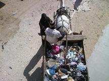 Modou Guèye, ramasseur d'ordures à bord de charette : « qu'on arrête de nous traiter de voleurs ! »