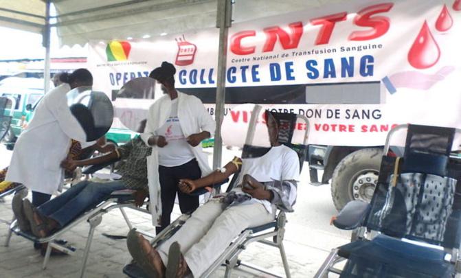 Pénurie de sang: « Les frigos sont vides » au CNTS