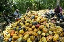 Des Ivoiriens pro-Gbagbo s'en prennent aux commerces étrangers